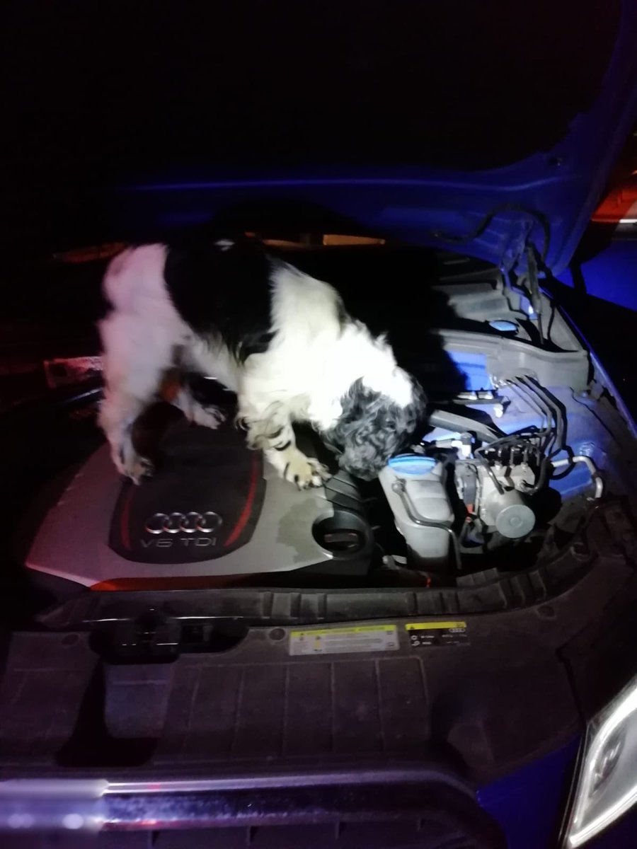 #shift3..Pd Barry has assisted in searching a  ..drugs recovered ..1 in custody @StaffsPolice vdu 785.<br>http://pic.twitter.com/zEACQNOjlg