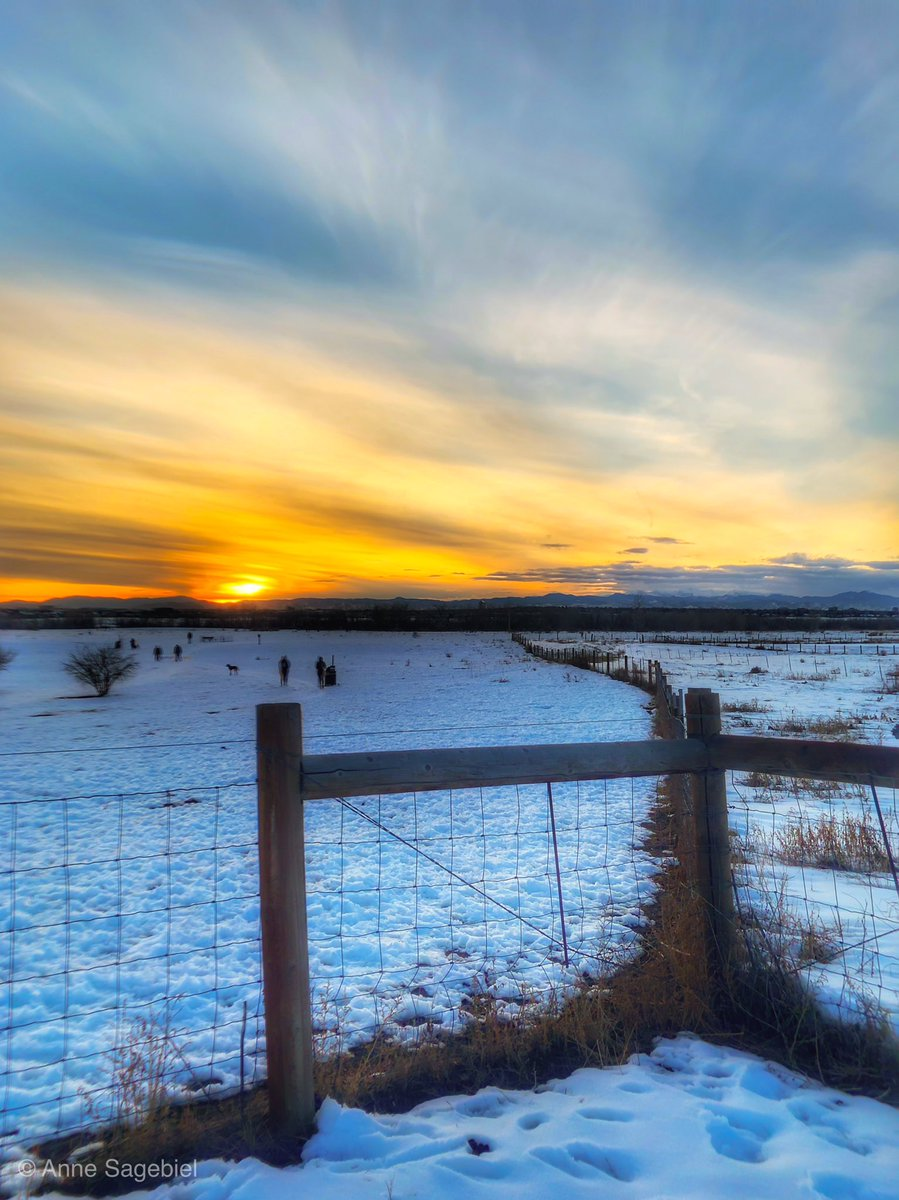 I feel like hell so I'm signing off.   Every day before I sign off,  I post one of my pics.  This is:  Tonight's sunset. 01/15/19 #Aurora #Colorado  (Anne C. Sagebiel)<br>http://pic.twitter.com/4G2kxZBJbb