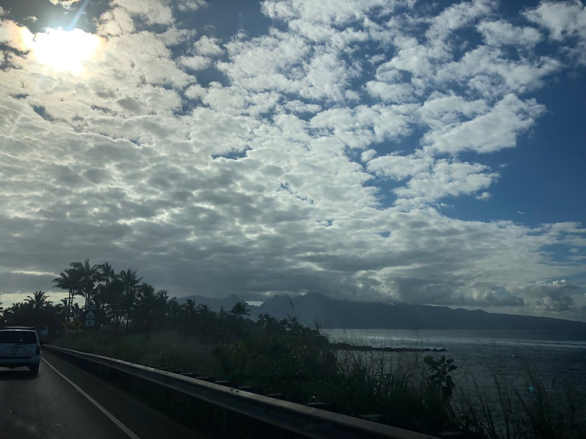test Twitter Media - Call him wins and warm on the North Shore. #cmweather #maui #northshore https://t.co/10jSPKPsFS