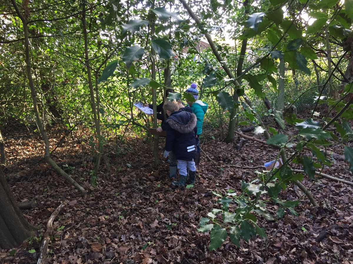 test Twitter Media - Year 1 Bird Spotters. How many birds can you identify? #gorseyfs #gorseyscience https://t.co/QaKqLmEABy