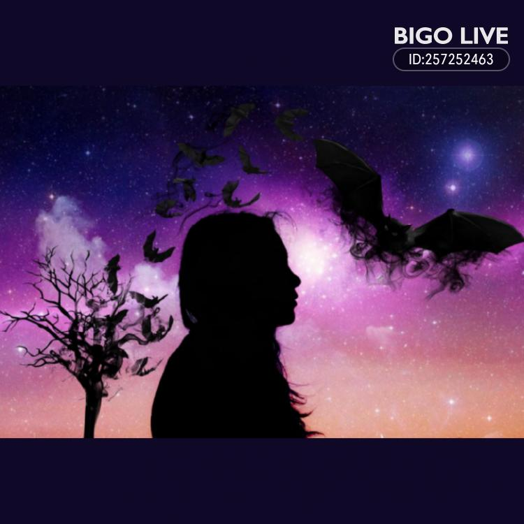 OMG! You have to see this. #BIGOLIVE.   https://t.co/8Tekywhobz https://t.co/Q6uCchvLTz