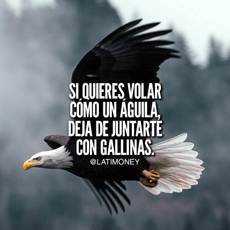 Titto Galvez Ar Twitter Aprendan A Juntarse Siempre Con
