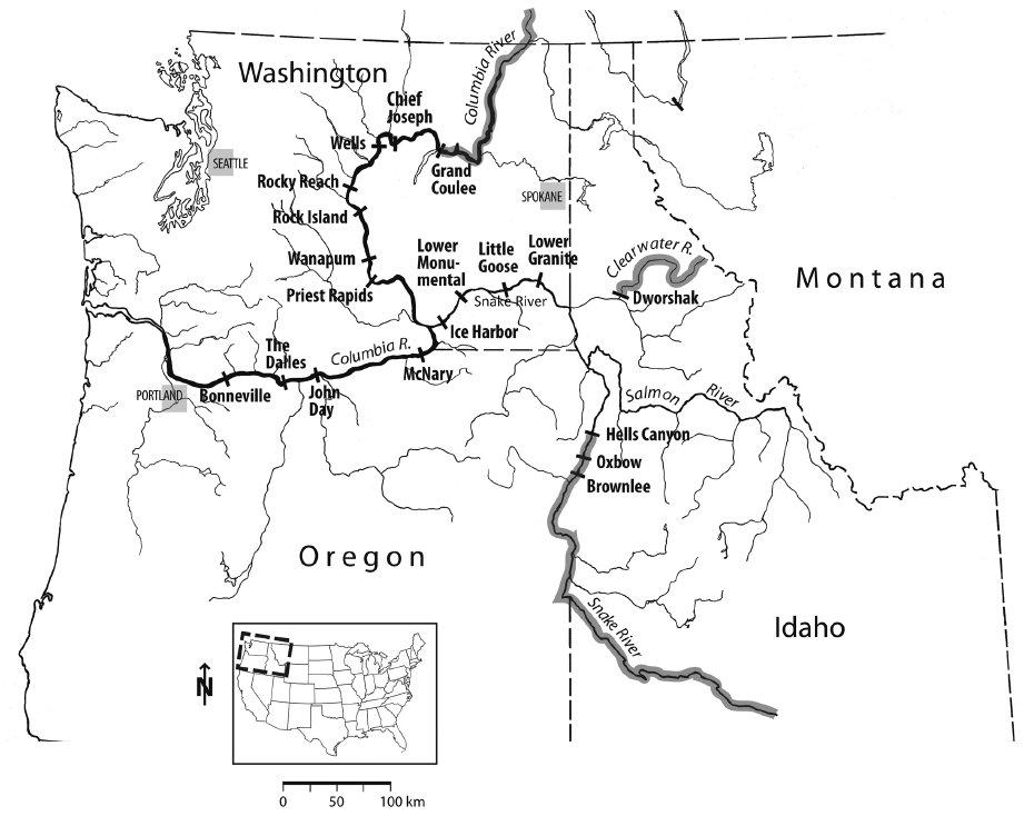 Diagram Of Dam