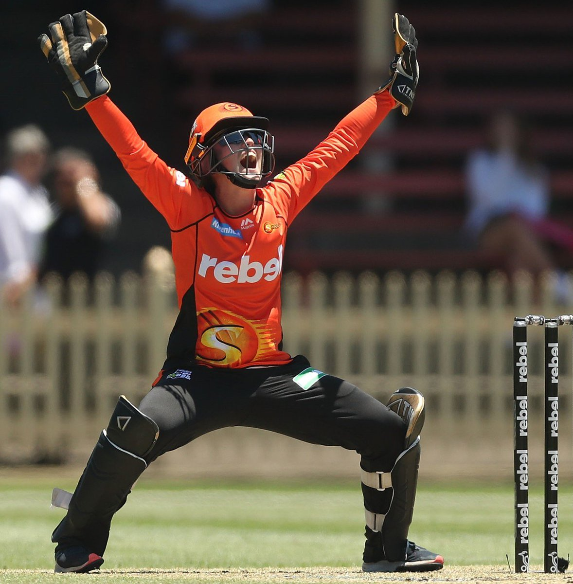 Perth Scorchers Scorchersbbl Twitter Pics Photos Diagram Of A Motherboard With Labels Ford Field Parking 0 Replies Retweets 14 Likes