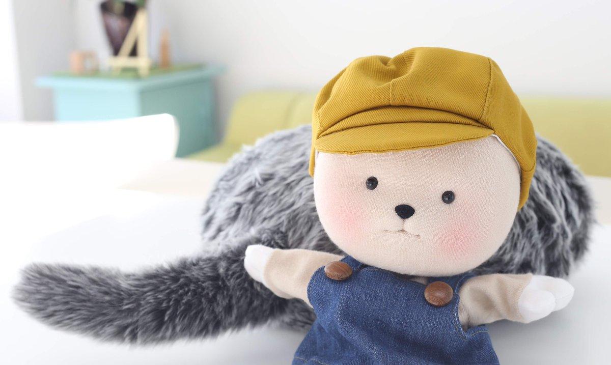 はじめまして、ぼくは、くぅ坊です!Qoobo広報担当になりました!たくさんなでなでしてQooboと仲良くなるぞ〜✨