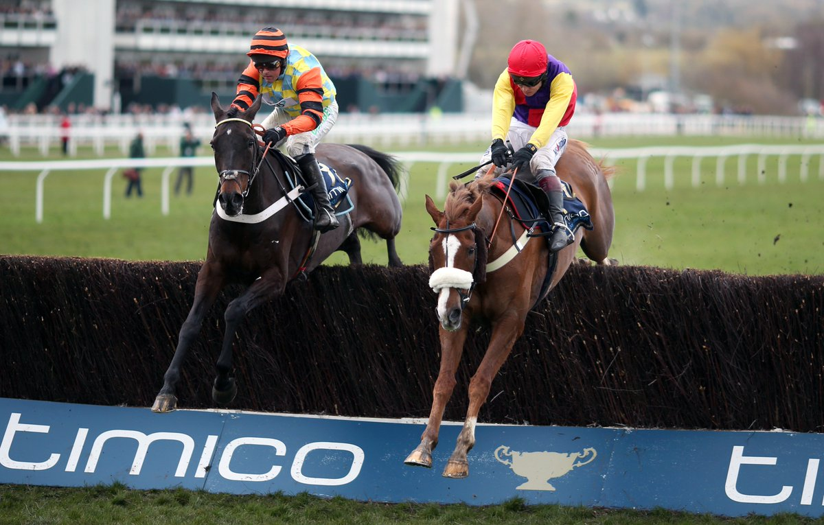 Cheltenham Gold Cup Entries 2019: Native River set to defend