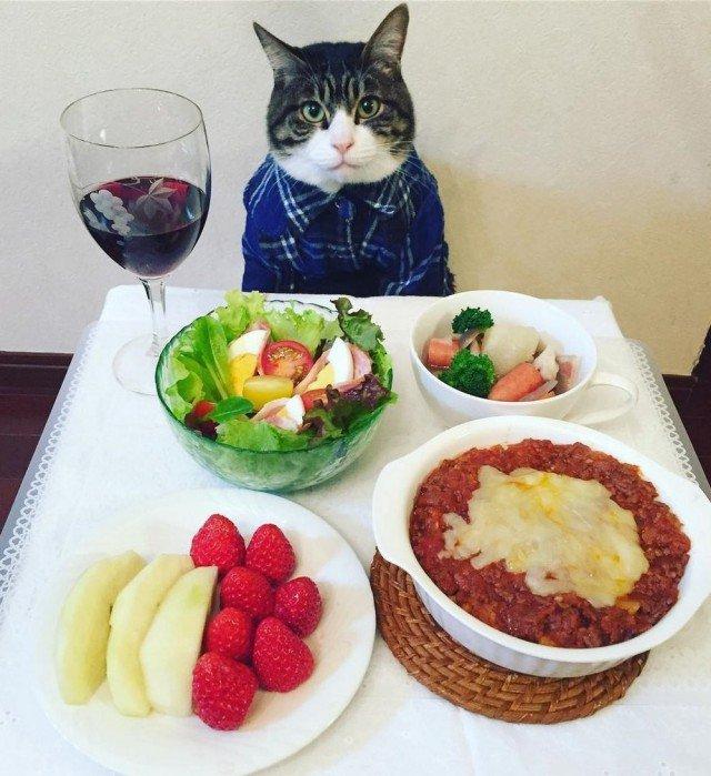 Ужин картинка прикол