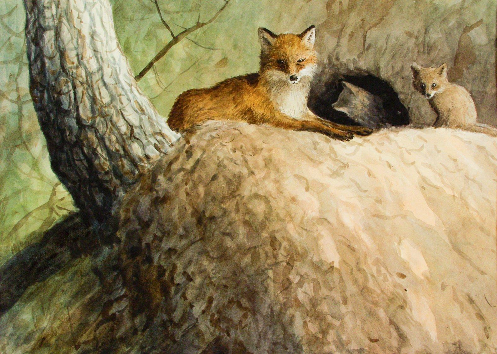 Рисунок лисы с лисятами в норе