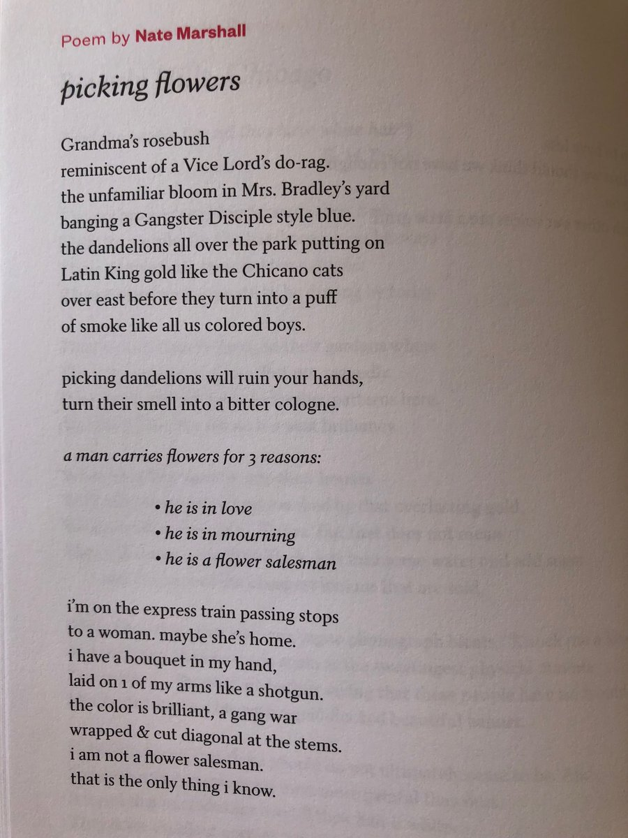 gangsta disciple poems