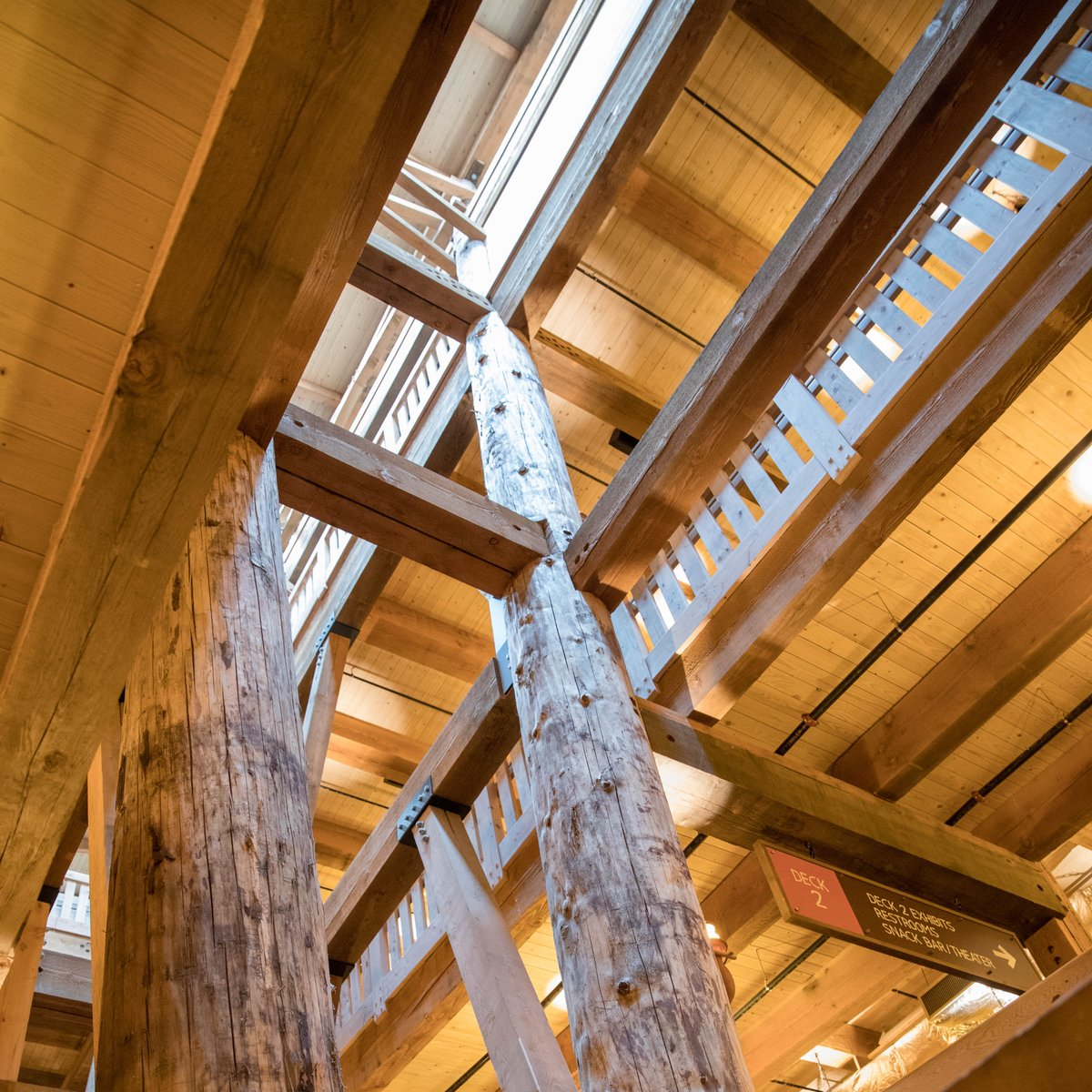 """Ark Wood Elevator ark encounter on twitter: """"the size of the ark is amazing!… """""""