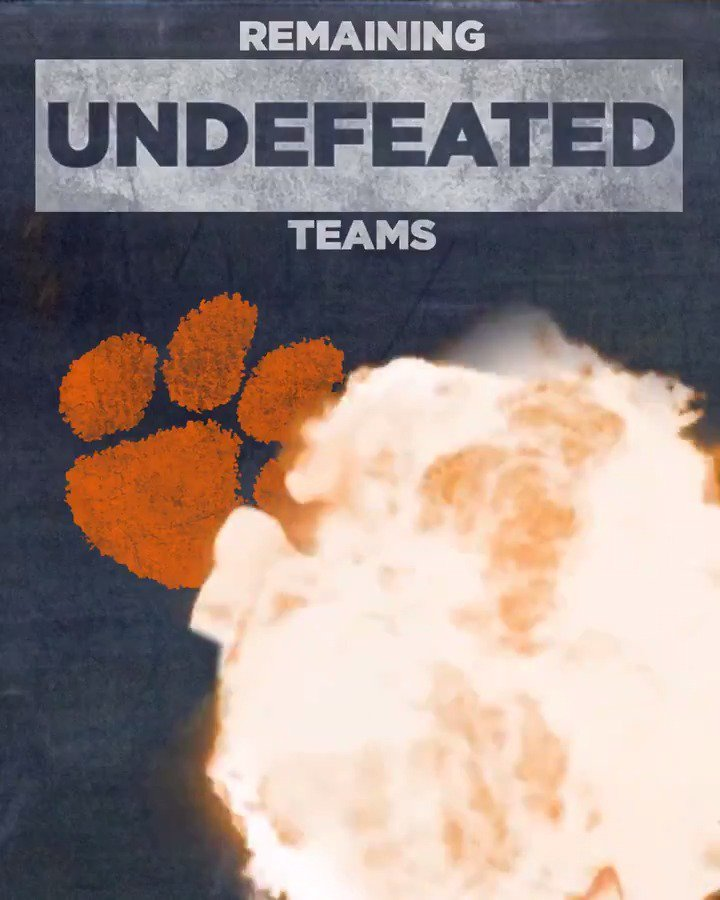 You know what we have to do. RT if your team finished the season undefeated!