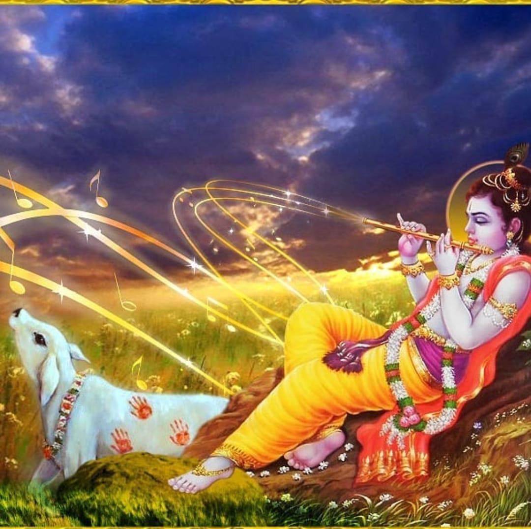 कृष्णाय वासुदेवायहरये परमात्मनेप्रणत क्लेशनाशायगोविन्दाय नमो नम:🙏🏻🌹वासुदेव के पुत्र भगवान श्रीकृष्ण कोदुख हरने वाले परमात्मा को,शरण में आने वालो के,क्लेशो को दूर करने वाले,गोविन्द को बारंबार नमस्कार होॐ_श्री_राधे_रुकमणश्रीकृष्णाय_नमो_नम:🙏🌹#सुप्रभात#जय_श्री_कृष्णा