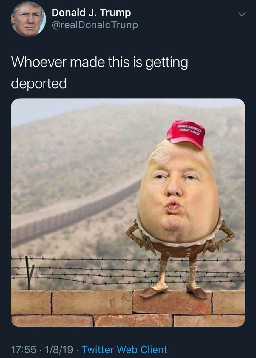 Donald Trump Meme Trumpmeme Twitter Follow @opvidsdaily on twitter they post fight vids and shi (self.twittermemes). donald trump meme trumpmeme twitter
