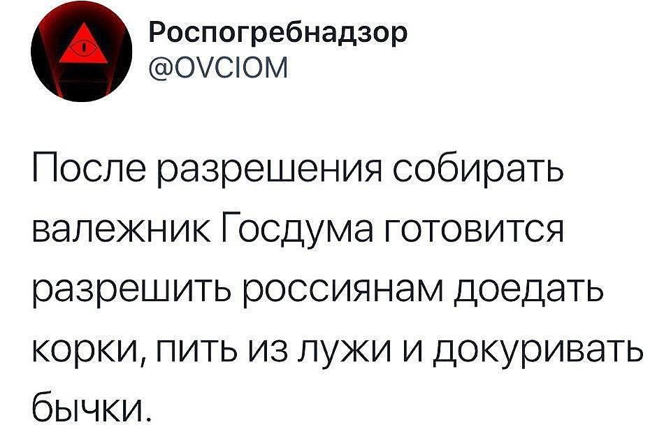 Дочь пресс-секретаря Путина, подданная Великобритании Елизавета Пескова посоветовала молодежи жить скромнее - как чеченцы в РФ - Цензор.НЕТ 3656