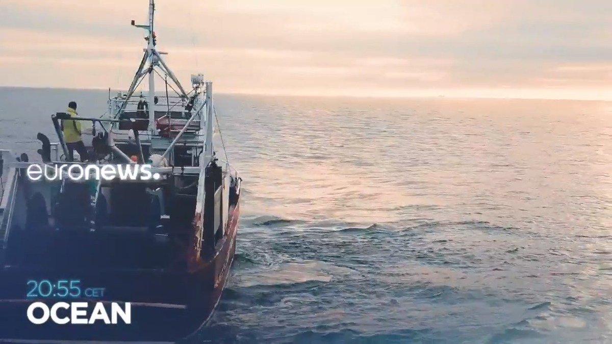 Image for the Tweet beginning: OCEAN - a new #Ocean