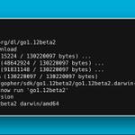 Image for the Tweet beginning: ⚡️ Go 1.12 Beta 2