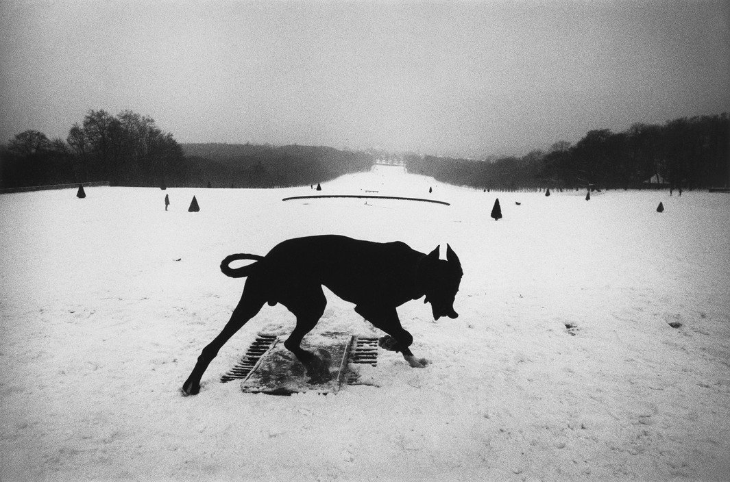 Throughout his career, Josef Koudelka has captured the rhythms and rituals of everyday life. Koudelka was born on this day in 1938—he's one of the greats. 📷 Parc de Sceaux, France, 1987 (via @MagnumPhotos) https://bit.ly/2RLYQLk