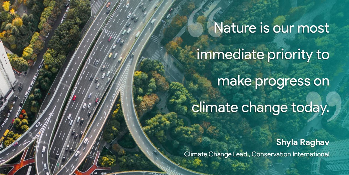 Take a look at the year ahead in #climatechange by @oliviad2150, feat. @shyla_raghav (@ConservationOrg).  Once again, #nature & nature based solutions are highlighted as #TheForgottenSolution to our fight against climate.  More on #Conservation Int.:  https://t.co/1NmiUKTTVm