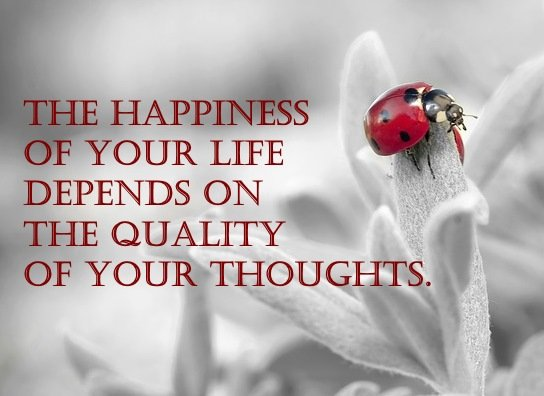 The happiness of your life depends upon the quality of your thoughts.   #FridayFeeling  #FridayThoughts <br>http://pic.twitter.com/sSwBjfQ5SX