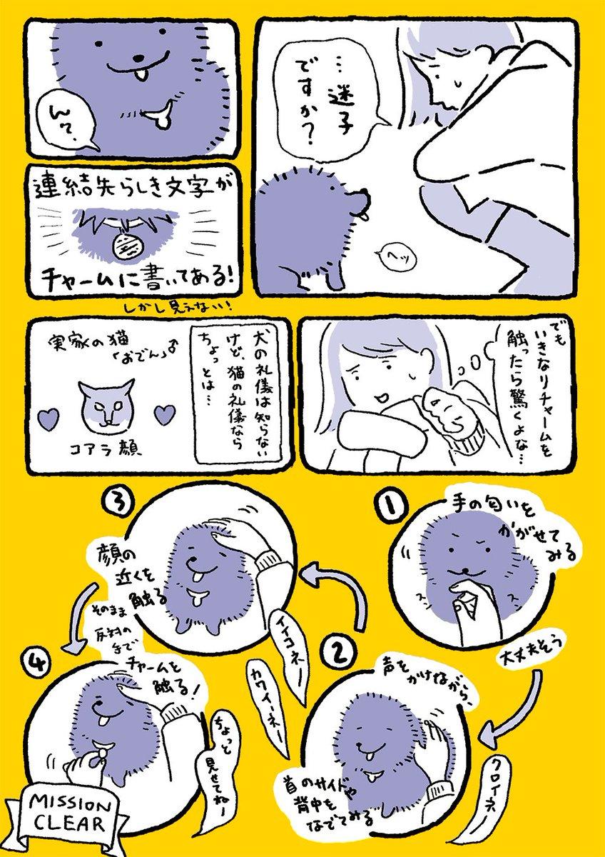 南條沙歩 NANJO sahoさんの投稿画像