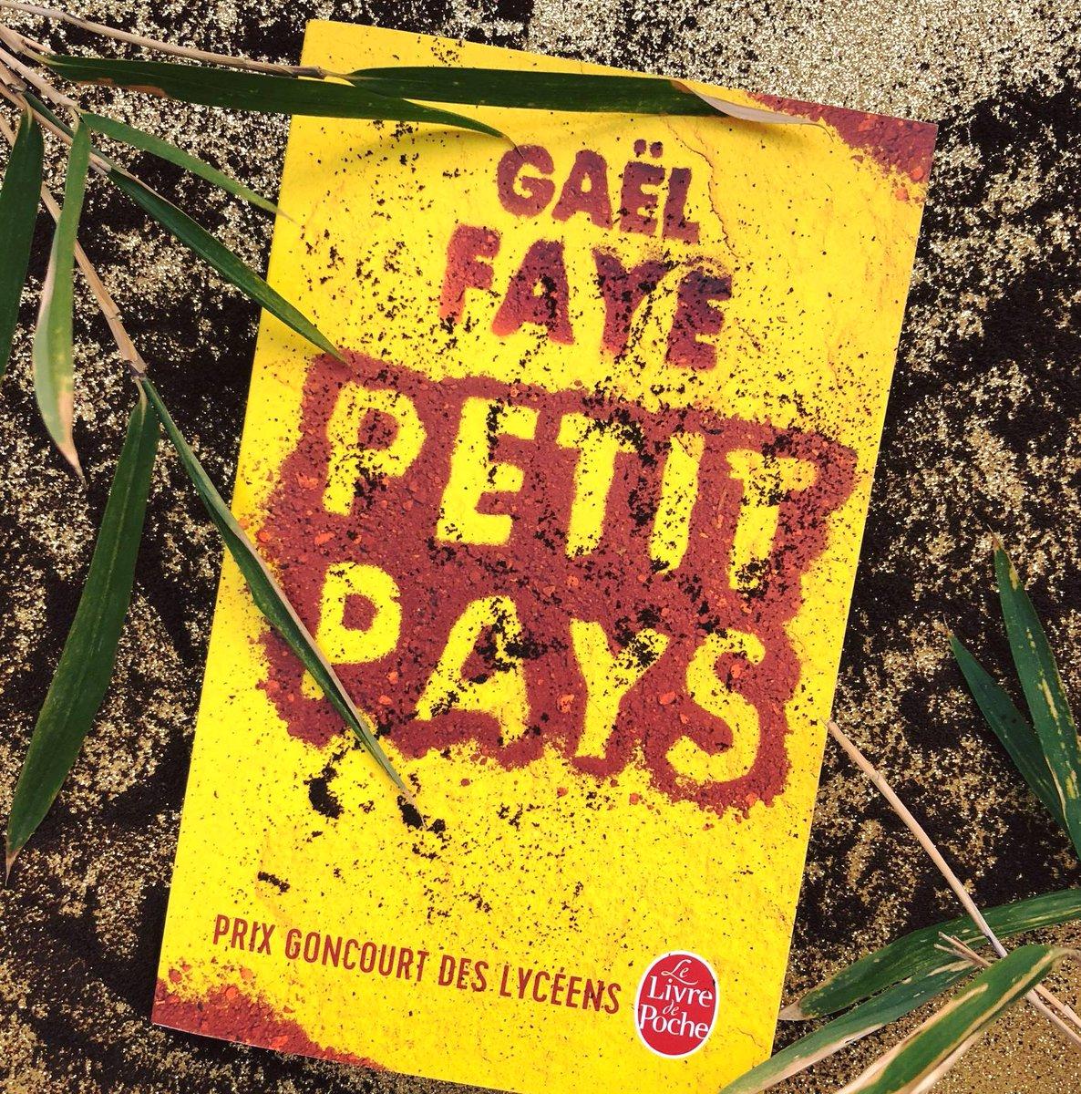 """Livre de Poche on Twitter: """"#BonneNouvelle L'adaptation du roman ..."""