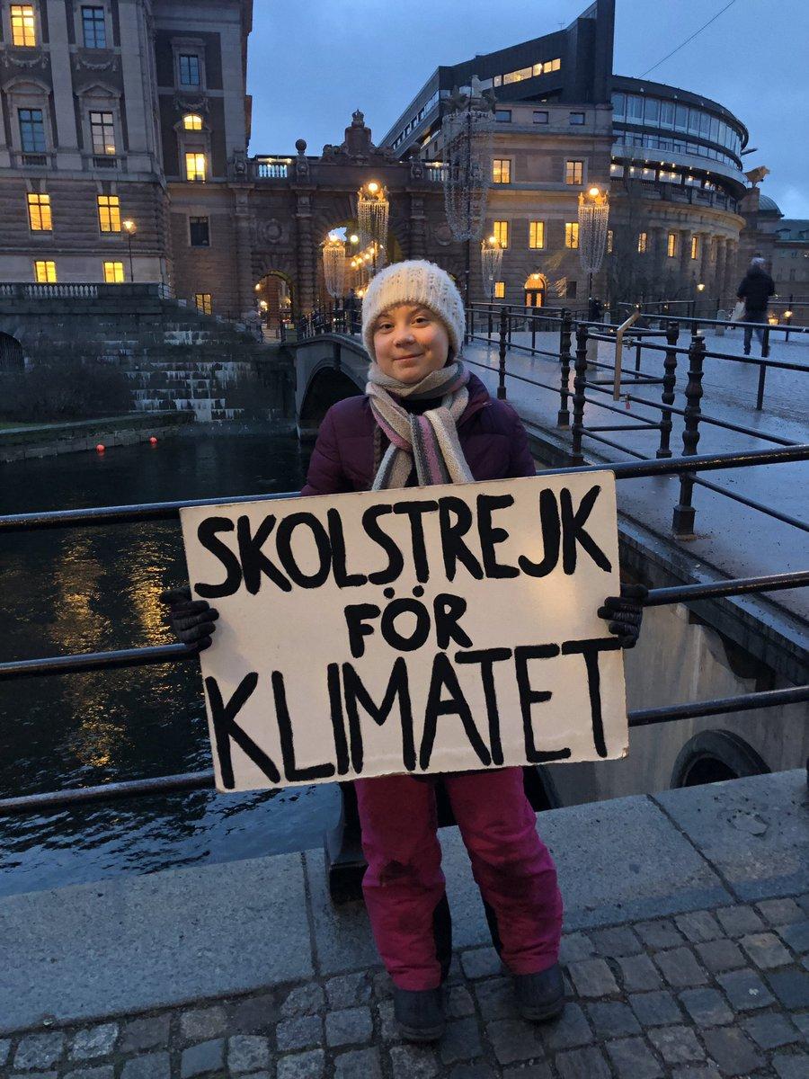 Greta Thunberg's photo on #fridaysforfuture