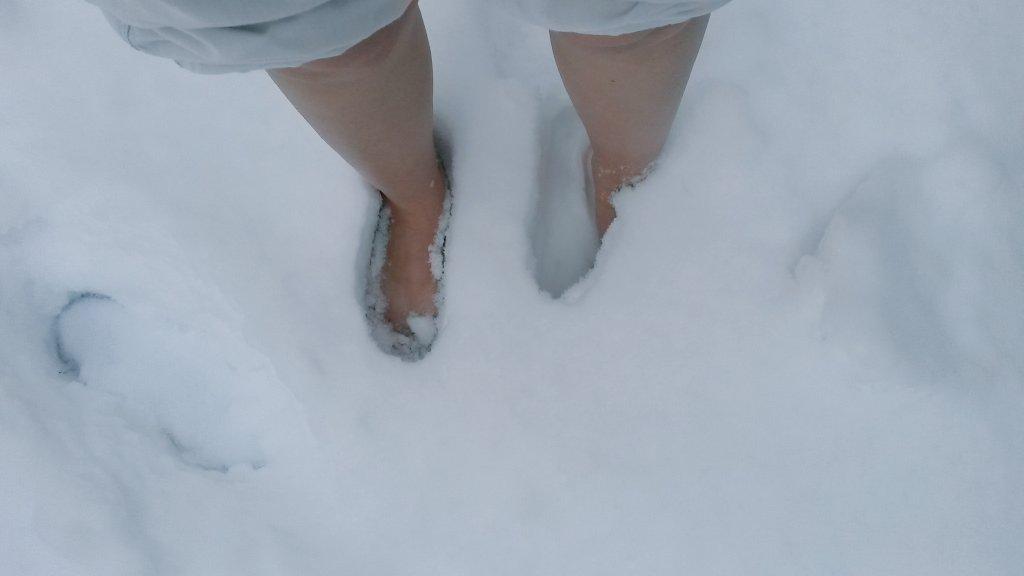 Tomillo's photo on #Schneefall