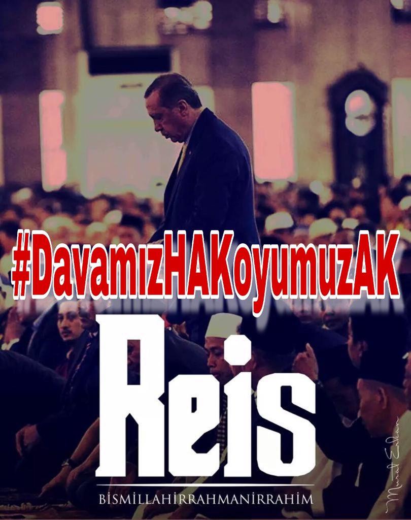 Zeynep Kula  🇹🇷🕊️'s photo on #DavamızHAKoyumuzAK