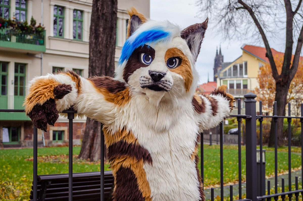 Eyo what&#39;s up? Doing something nice this weekend?  :@NeonFurStudios  :@LeeTaiger  #FursuitFriday #Fursuit #fursuiting #cutefursuit #fursuiter #furryfandom #FurryFriday #lynx #furries<br>http://pic.twitter.com/ajrnFR1RhM
