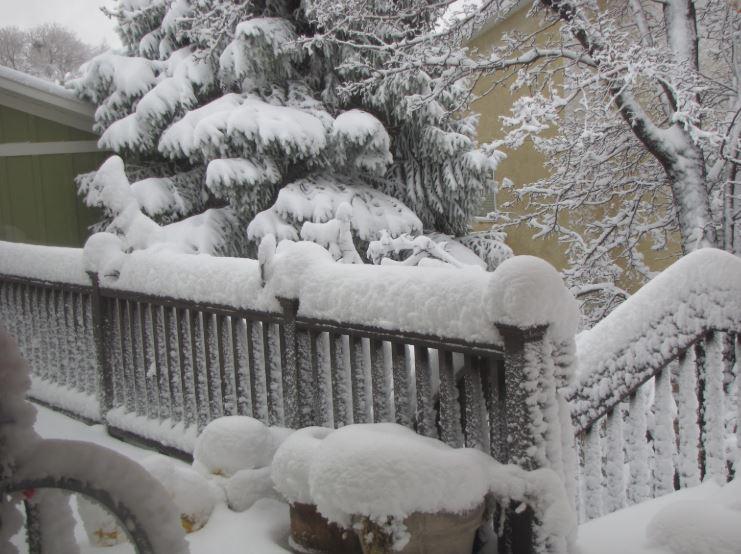 IIS llc's photo on Winter Storm Warning