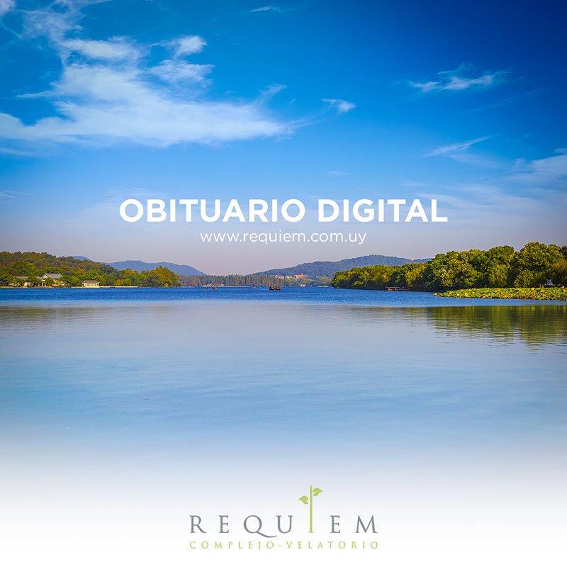 Requiem's photo on Día 11