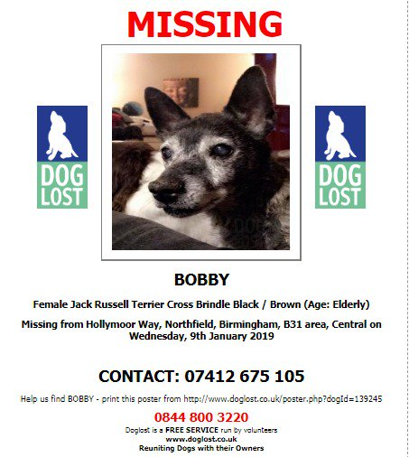 #LOST #DOG BOBBY Female #JackRussellTerrier cross  Bobby is deaf and has poor vision  She is 16 years old Brindle  #Missing from Hollymoor Way #Northfield #Birmingham #B31  Wednesday 9th January 2019 #LostDog #ScanMe @SAMPAuk_ @VetsGetScanning    http://www. doglost.co.uk/dog-blog.php?d ogId=139245 &nbsp; … <br>http://pic.twitter.com/rItE3xaIPT