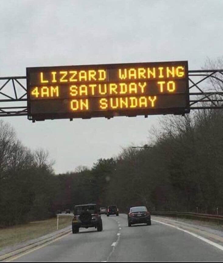 St. Louis braces for a major snow storm and possible lizard attacks.