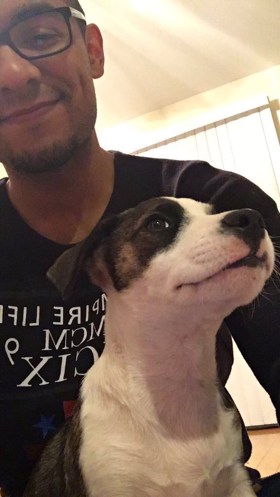 This is Donald. He's a rescue pup originally from Puerto Rico. He had his first seizure a few years ago and none of the medication he's been prescribed has helped stop them. He needs an MRI to find out what's wrong and you can help him get it below. 13/10  https://t.co/5KnemriREv
