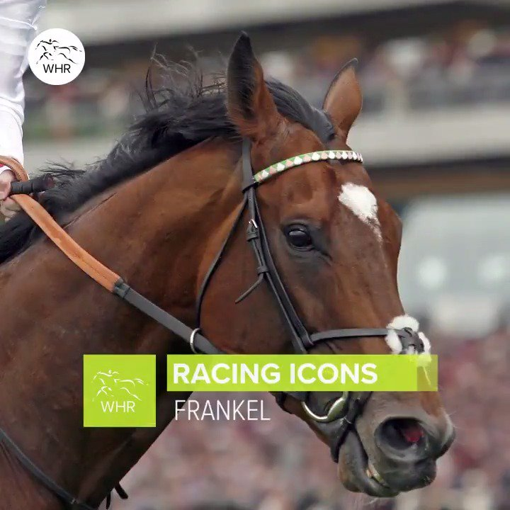 World Horse Racing's photo on frankel