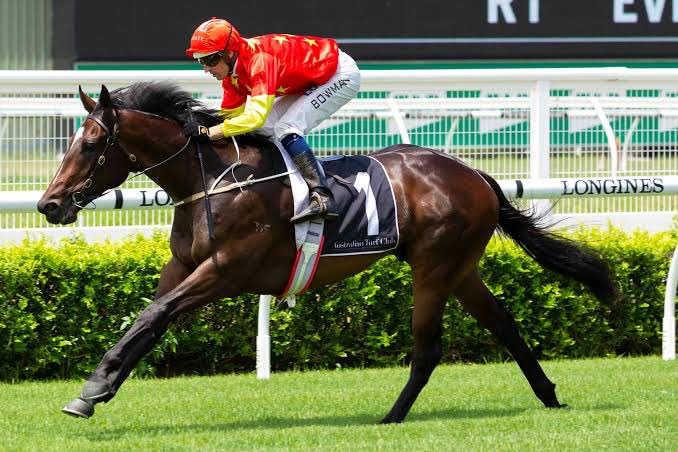 Woodside Park Stud's photo on 2YO Classic