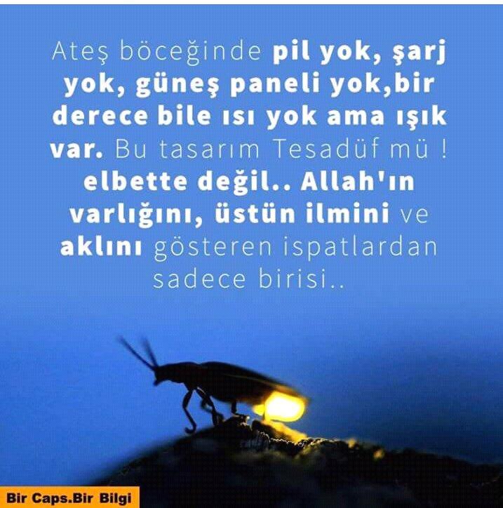 Almila Kartal's photo on #AllahınRenkSanatı