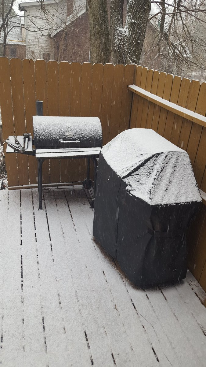 Sarah Kendzior's photo on #snowpocalypse