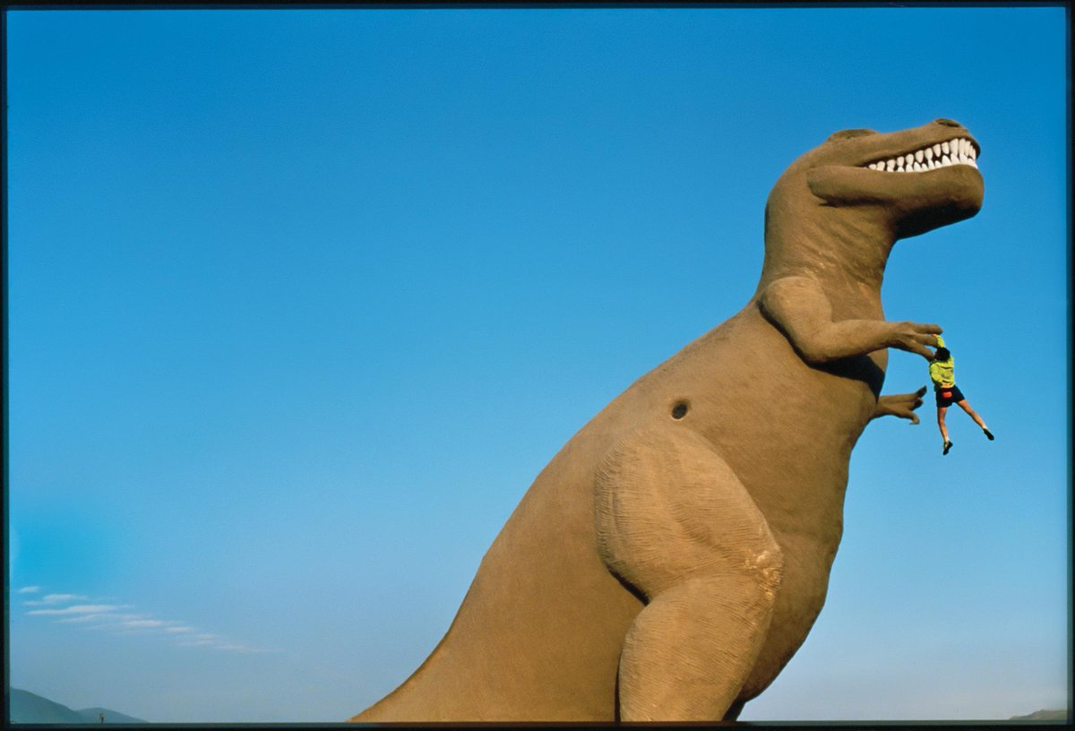 """Rex"" the tyrannosaurus and a morning morsel on Highway 10 near Palm Springs.  Climbing on them is (still) illegal.  Photo: Greg Epperson  (Originally appeared in our Spring 1984 catalog.) <br>http://pic.twitter.com/I8rye1BdHF"