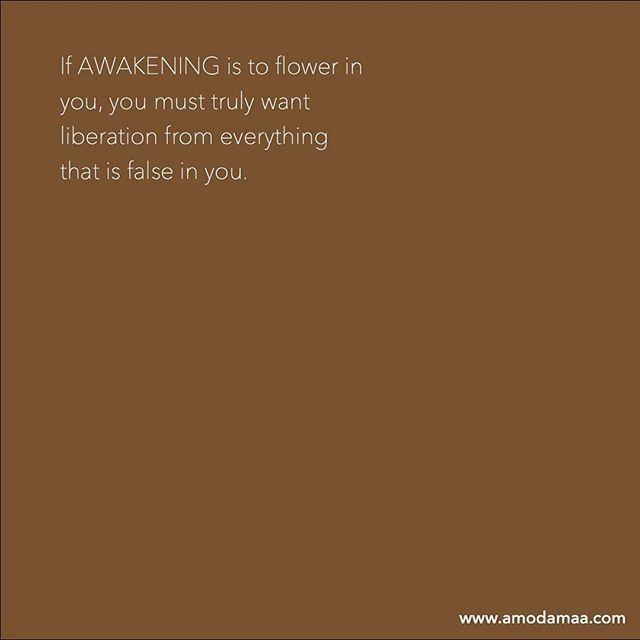 Amoda Maa Jeevan's photo on Wisdom