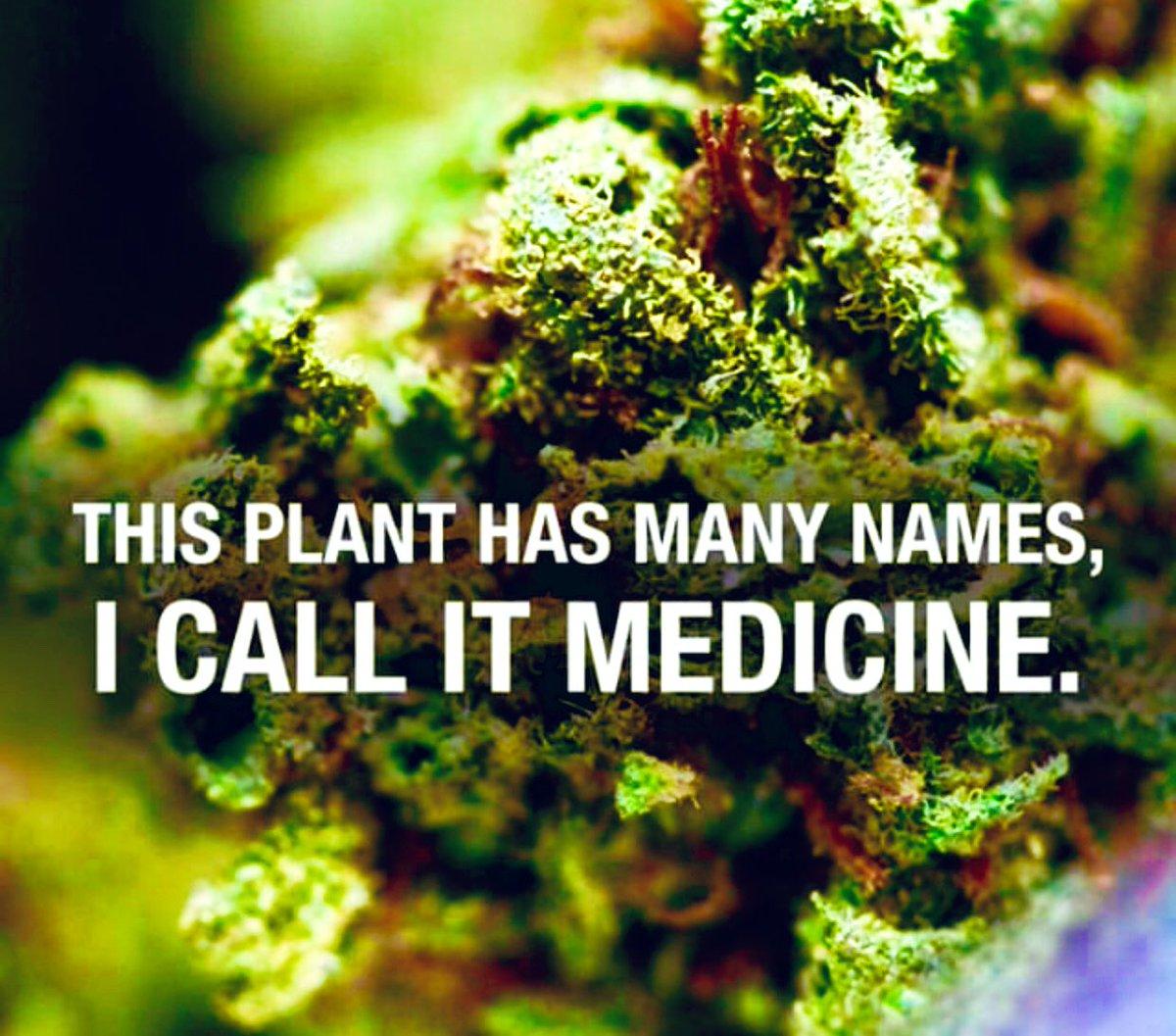 ★Mary★'s photo on #cannabis
