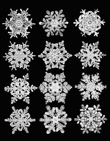 Eiskalt abgelichtet: Heute vor 134 Jahren gelang Wilson Bentley die erste mikroskopische Aufnahme einer Schneeflocke (aus dem @einestages-Archiv) https://t.co/xCoCFgqI7m