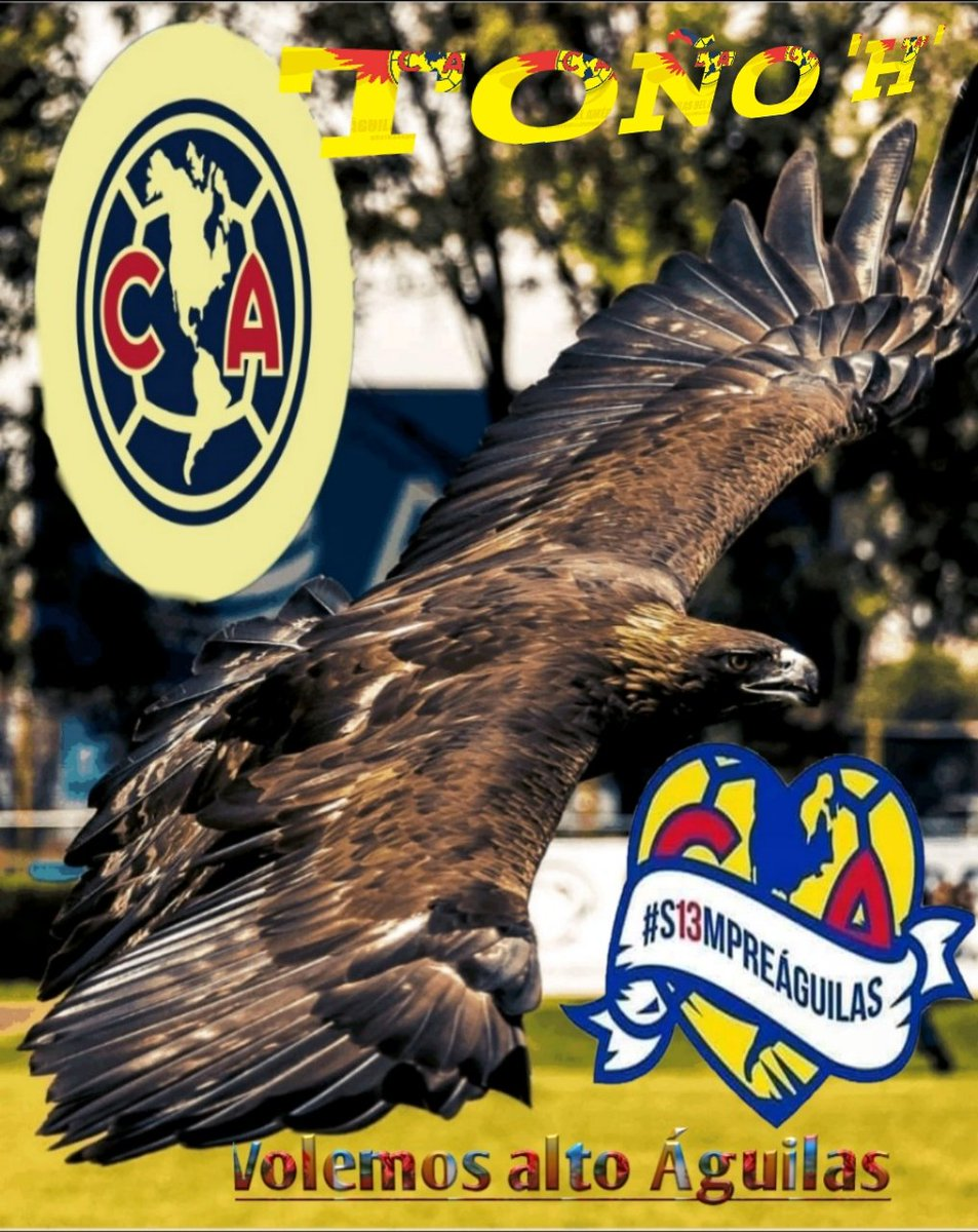 Toño..🦅🇲🇽💝's photo on #S13MPREÁGUILAS