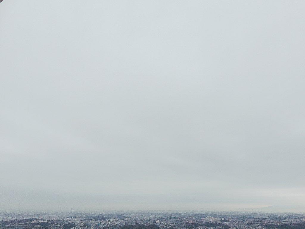 桜日梯子's photo on 雪降り