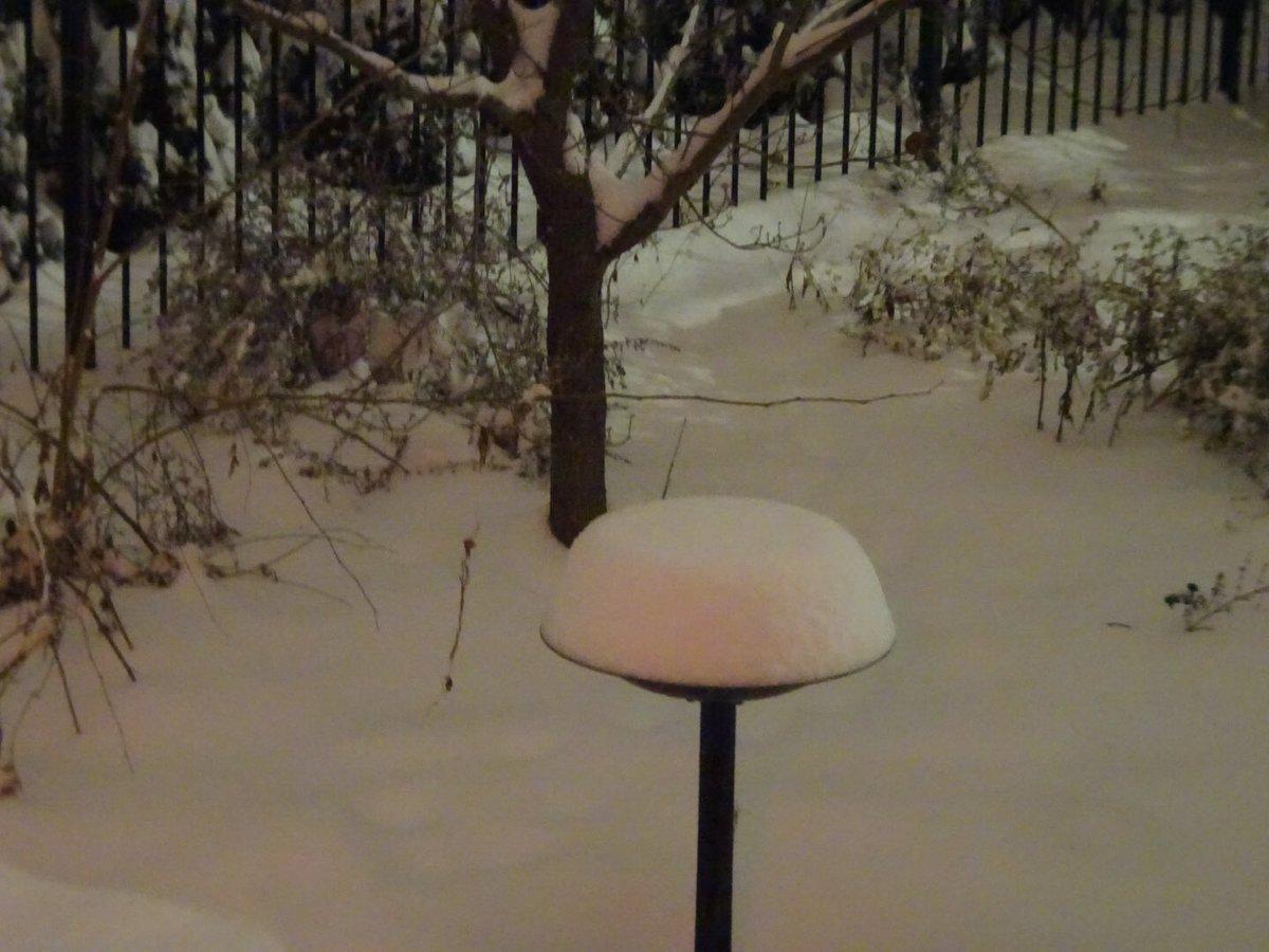 Andrea's photo on #snowpocalypse