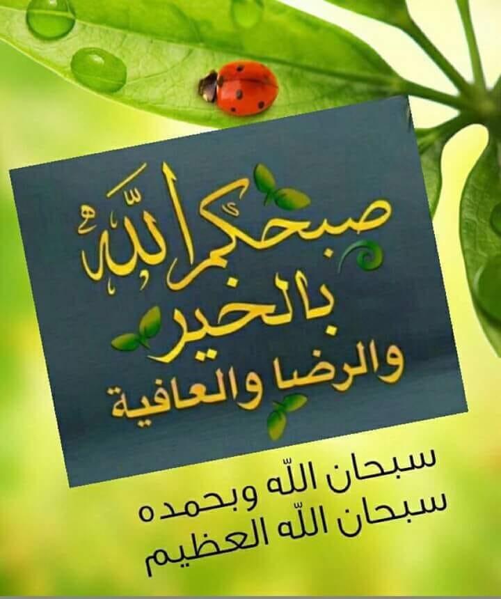 M07MMED 7KMI🇸🇦🇦🇪's photo on #ودي_الليله_يكون