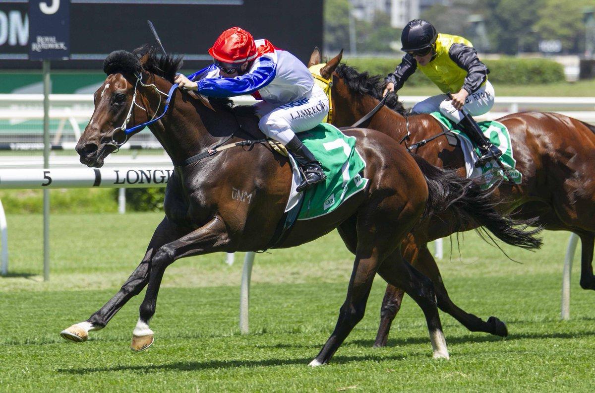 Racing NSW's photo on Randwick