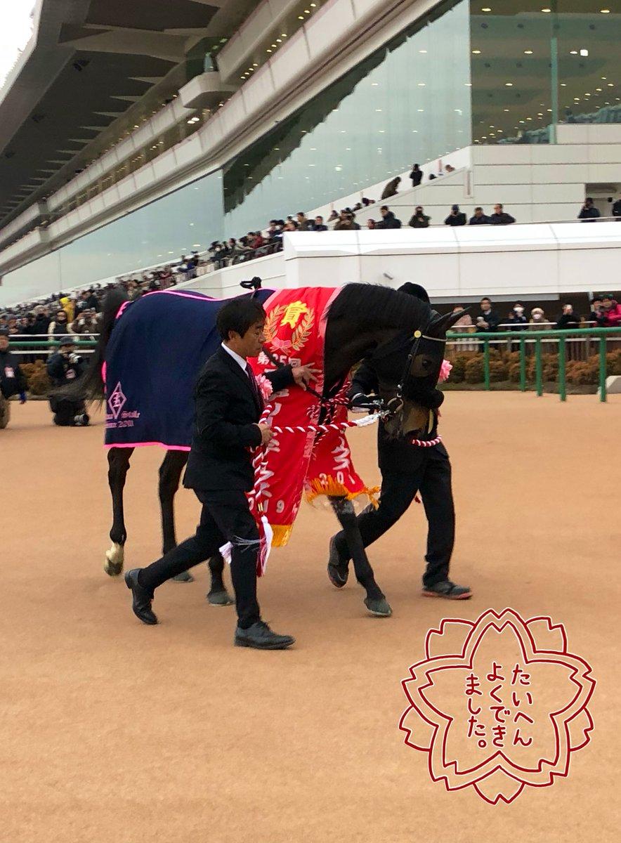 菊沢厩舎's photo on フィリアプーラ