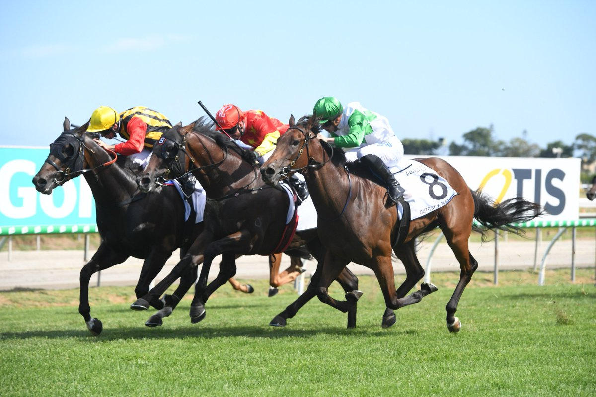 Today's Racing's photo on 3YO Guineas