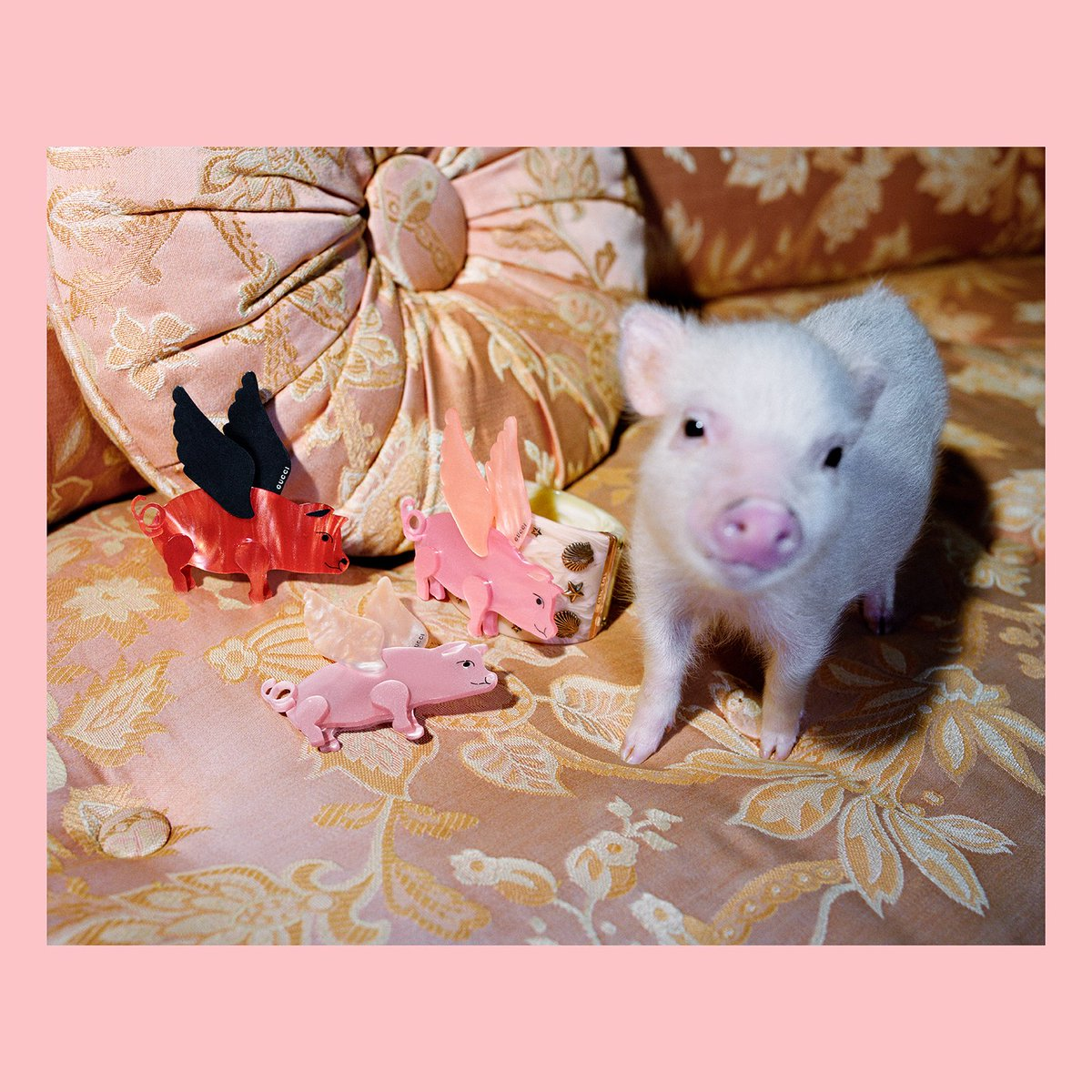 bcdfb7e4748be7 Flying pig brooches are next to a tiny piglet, part of the #Gucci collection